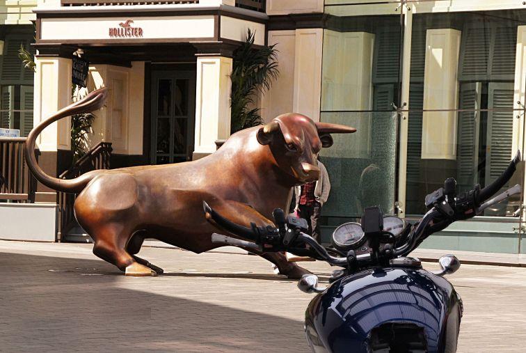 k-03 bull+bonnie.jpg